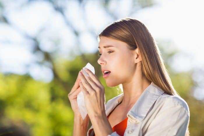 foods that fight seasonal allergies